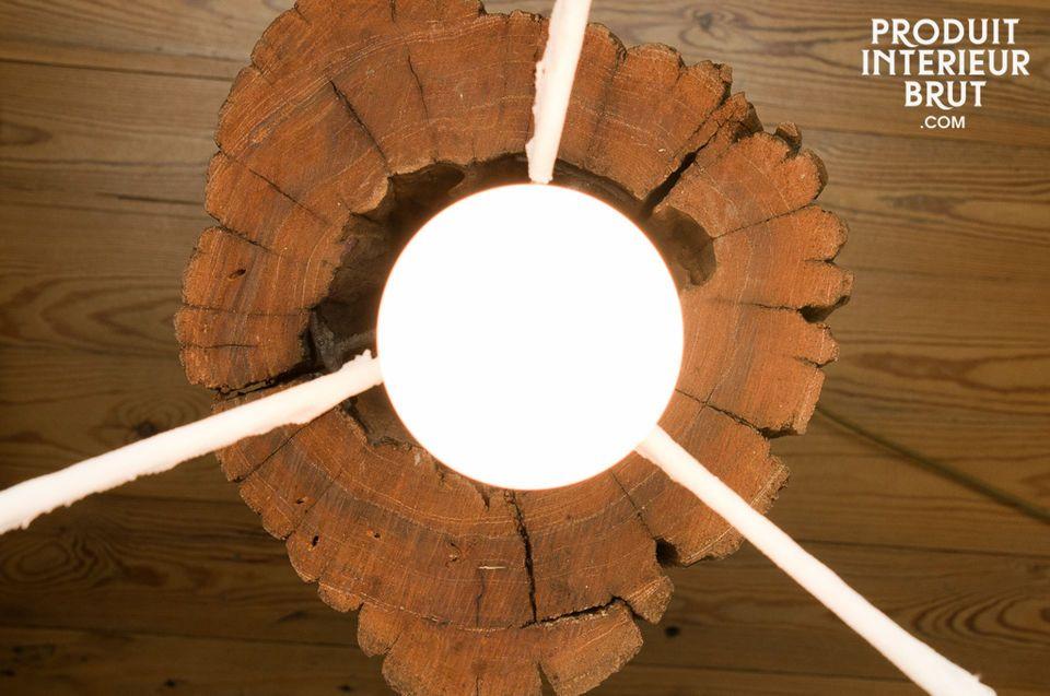 Ogni tronco è diverso e possiede quindi caratteristiche uniche