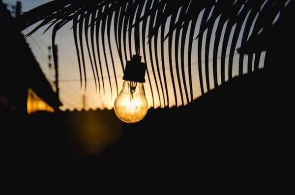 lampadina in stile vintage