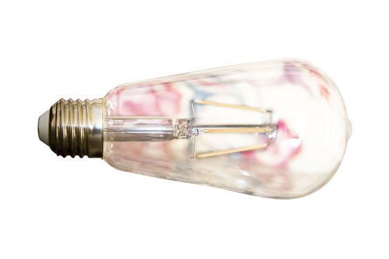 Lampadina LED lunga vecchio filamento Foto ritagliata