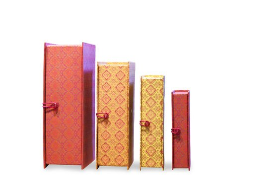 Le scatole del Dottor Vincent Foto ritagliata