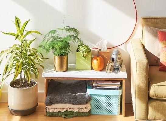 Porta piante oro pot
