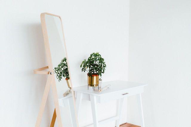 Specchio bianco pianta
