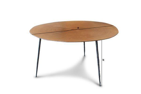 Dimensioni del prodotto Tavolino basso Xylème