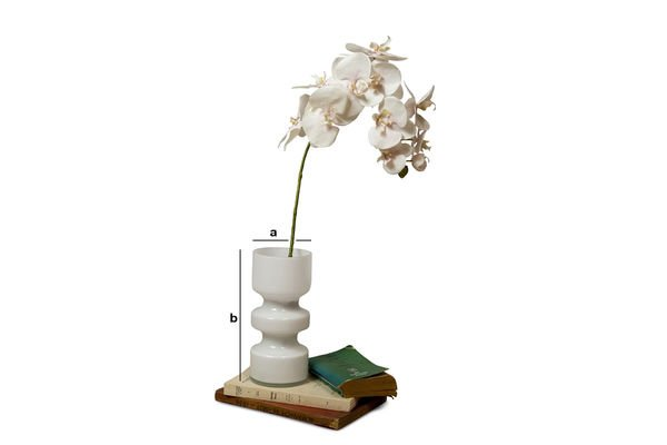 Dimensioni del prodotto Vaso in vetro Ella